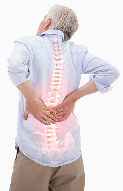 elderly person holding their lower back in pain with the image of their spine visible